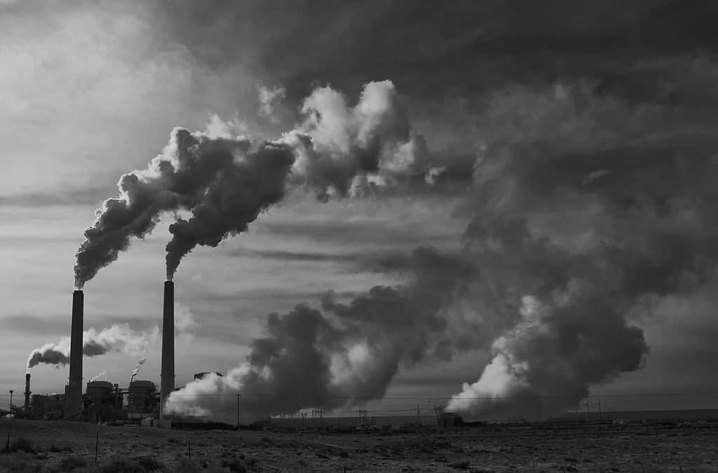 Can CO2 Emissions Be Taxed Without Harming the Poor?