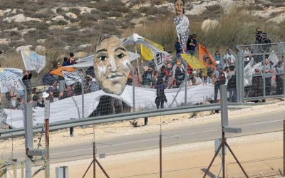 Disturbing the Peace: A Film on Ending the Israeli Occupation 'With Your Own Hands'