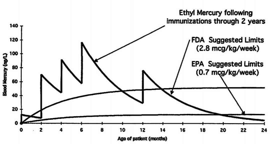 Cumulative mercury exposure from vaccines