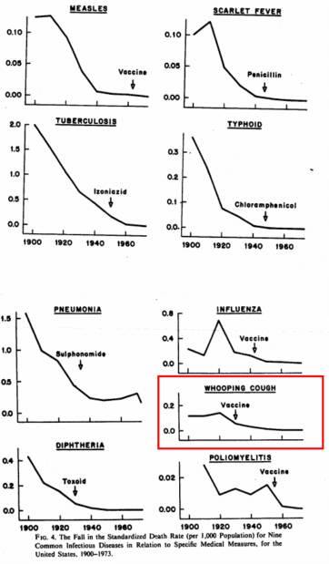 decline in infectious disease mortality before vaccines